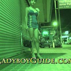 Thai ladyboy recogida por la calle durante la noche para tener sexo duro