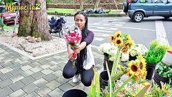 La floristera colombiana Morelia Mazo se deja penetrar por una preciosa polla